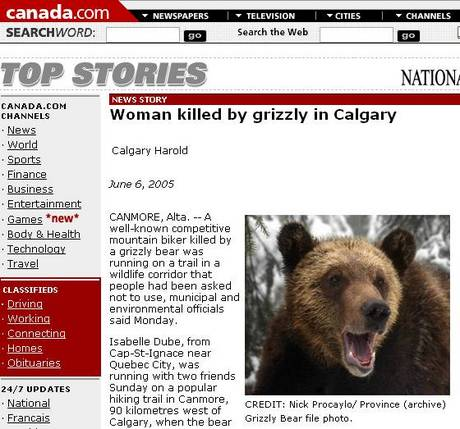 Bear_attack_article_1
